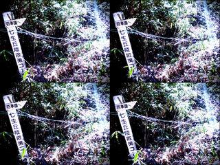 iPod touch『百草園へのもう一つの道』-7