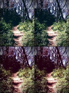 iPod touch『百草園へのもう一つの道』-8
