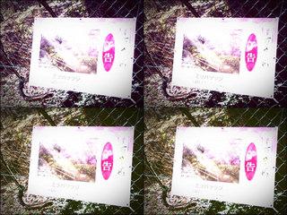iPod touch『百草園へのもう一つの道』-14