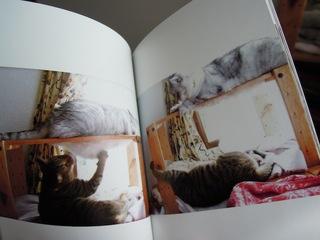 TOLOTで猫らアルバム作ったぞー-4.JPG