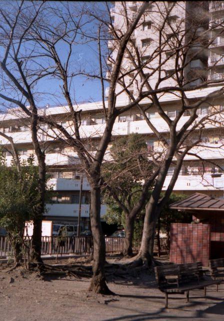 smena8m_20051225test-07