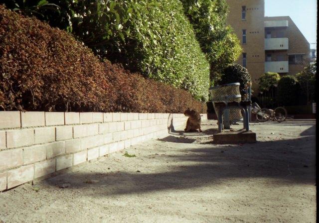 smena8m_20051225test-12