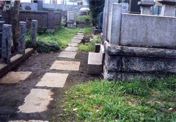 smena8m_20060416yanakaneko-15