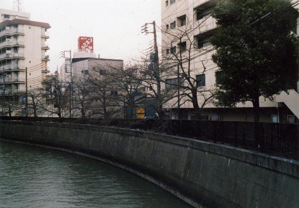 smena8m_20060505sakura-01
