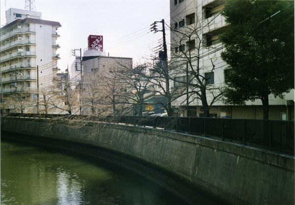 smena8m_20060505sakura-02