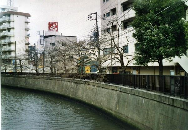 smena8m_20060505sakura-03