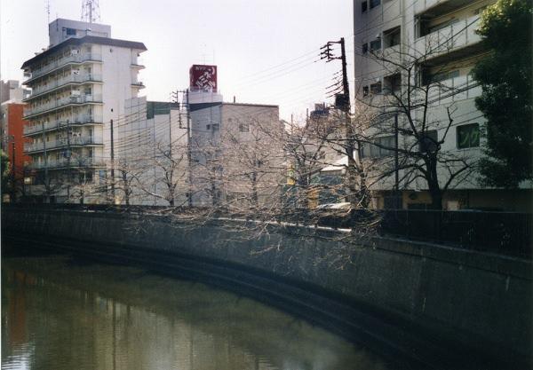 smena8m_20060505sakura-08