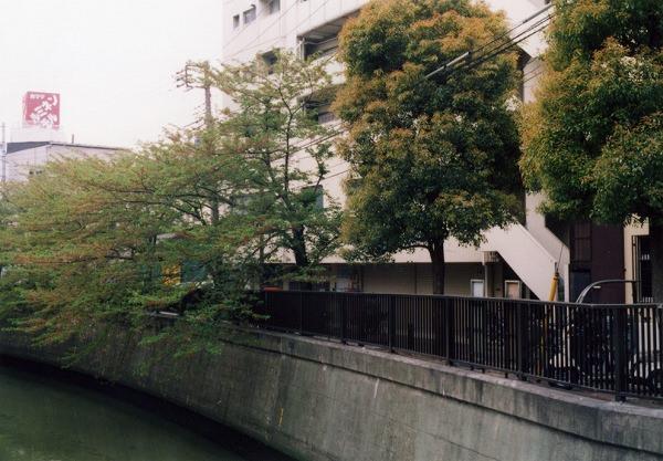 smena8m_20060505sakura-23
