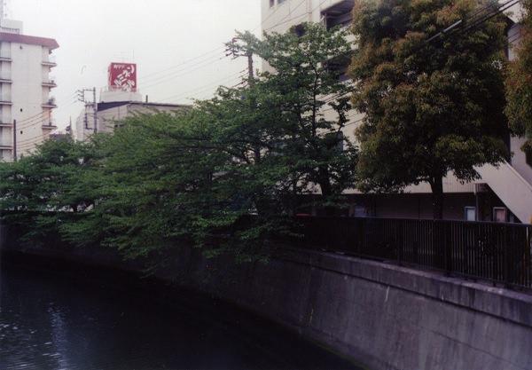 smena8m_20060505sakura-25