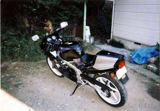 20080707ns1.jpg