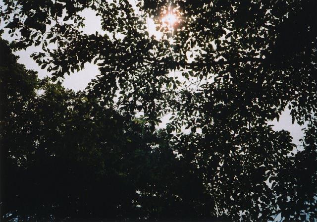 agat18k_200906vtzarekore-10