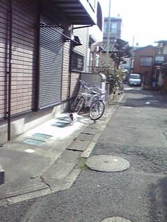 20090318neco.jpg