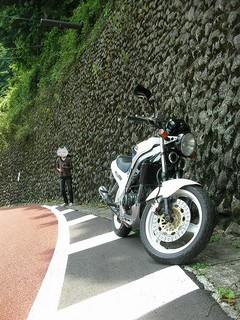 20090627okutama_03.jpg