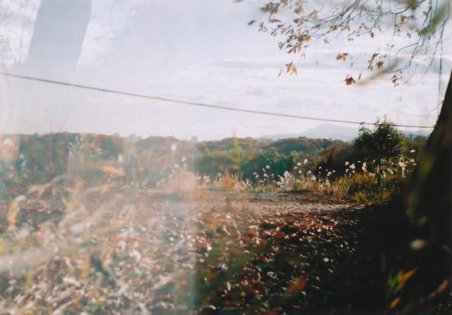 lomo135m_200912toykouyou-03