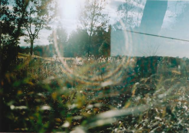 lomo135m_200912toykouyou-05