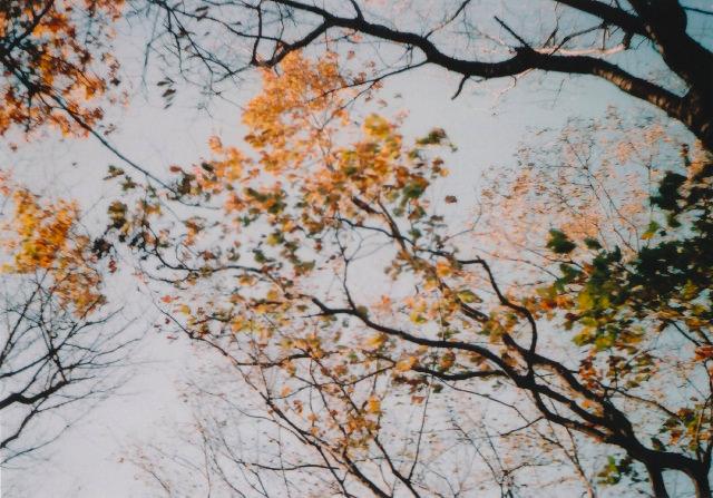 lomo135m_200912toykouyou-07