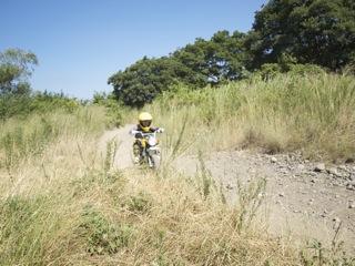 20110710猿ヶ島GIF1