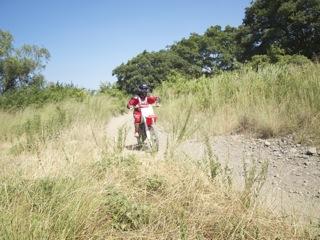 20110710猿ヶ島GIF2