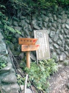 稲村岩から鷹ノ巣山11