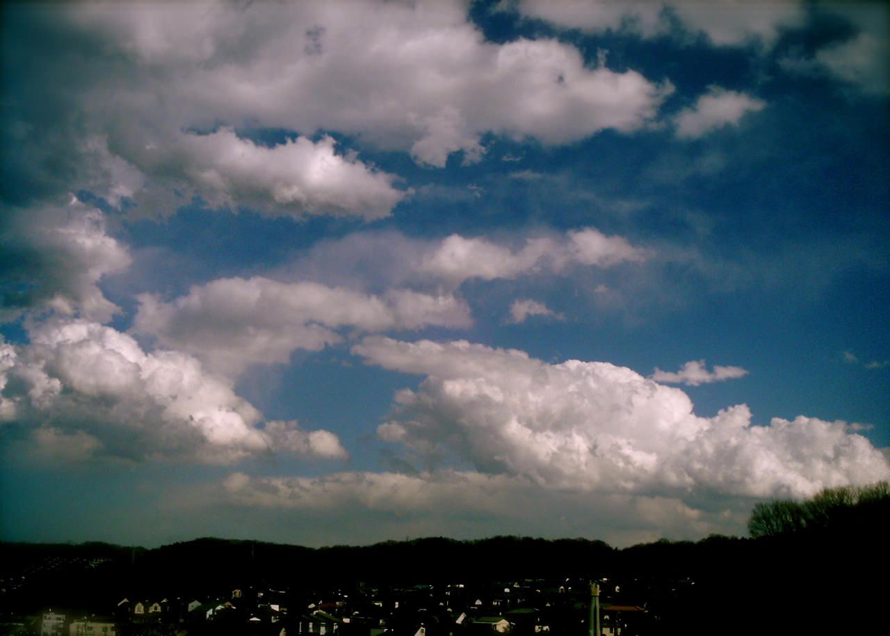 Polaroid_a520_kumo20120531-2.jpg