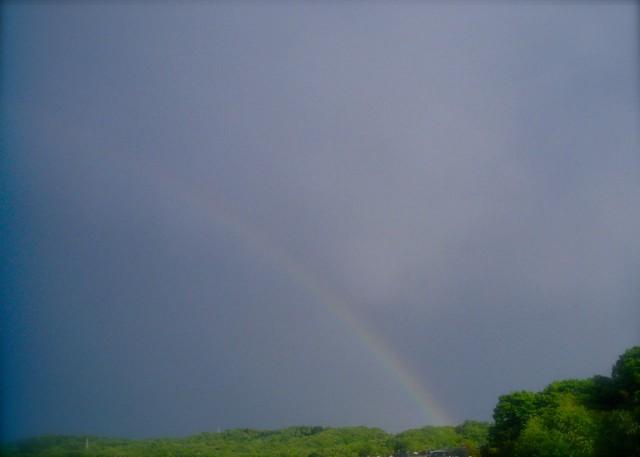 Polaroida520_rainbow-2.jpg