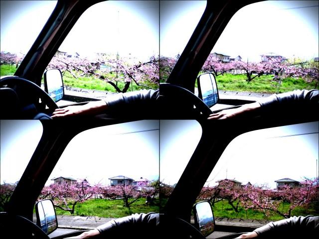 ipodtouch_yamanashi2012_4-1