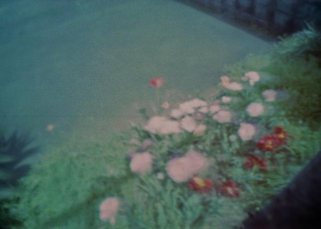 pramodelcamera_wppd2012-01