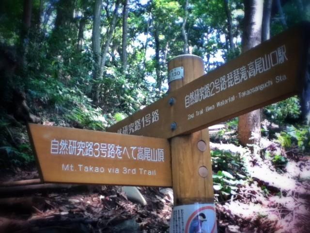 MountTakao-11.jpg