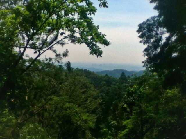MountTakao-15.jpg