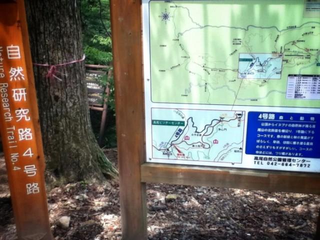 MountTakao-20.jpg