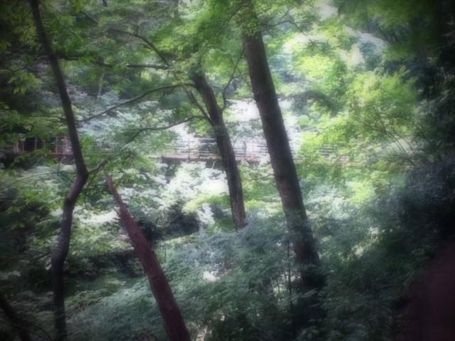 MountTakao-22.jpg