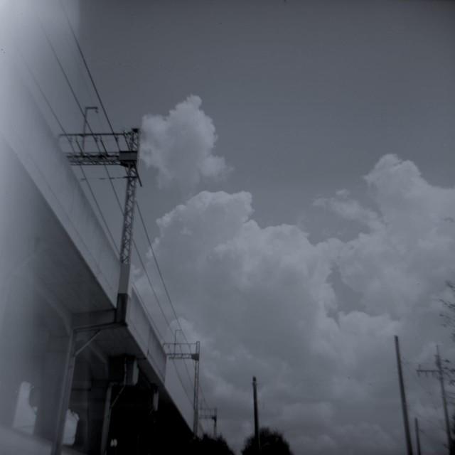 Fujipet_summer-4.jpg