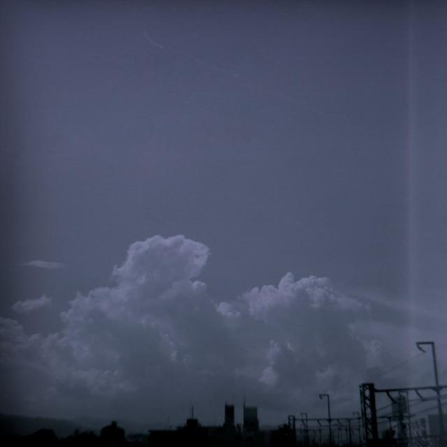 Fujipet_summer2-2.jpg