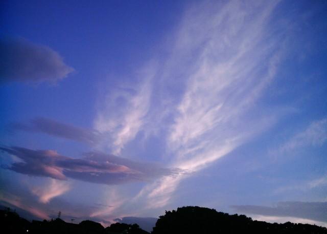 Polaroid_izone550_kumo0926-2.jpg