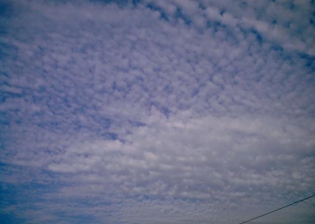polaroid_a520_kumo1013-8.jpg