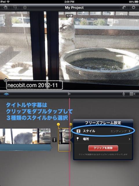 cat_balcony_iMovie2.jpg