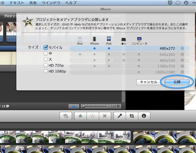 iPod_touch_5g_video_cat-imovie2.jpg