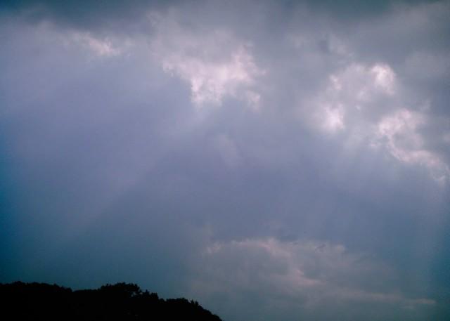 polaroid_a520_kumo20121101-5.jpg