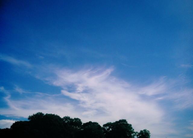 polaroid_a520_sky20121201-1.jpg