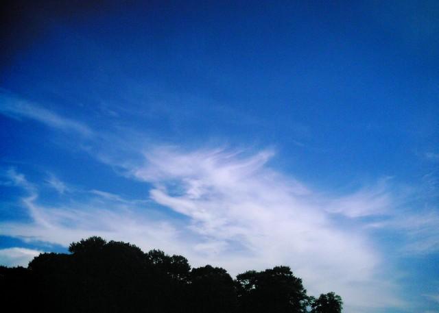 polaroid_a520_sky20121201-2.jpg
