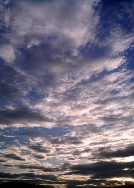 polaroid_a520_sky_20121211-1.jpg