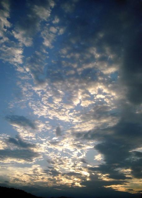 polaroid_a520_sky_20121211-2.jpg