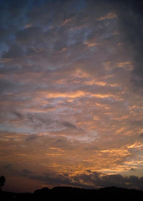 polaroid_a520_sky_20121211-5.jpg