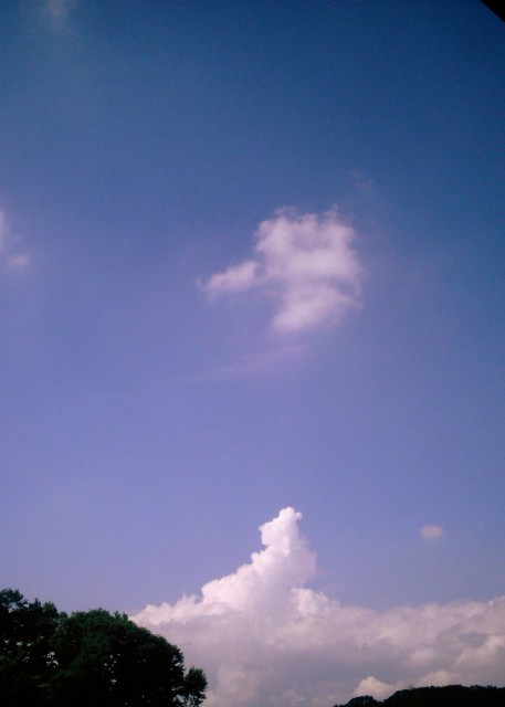 Polaroid_a520_sky_20130201-5.jpg