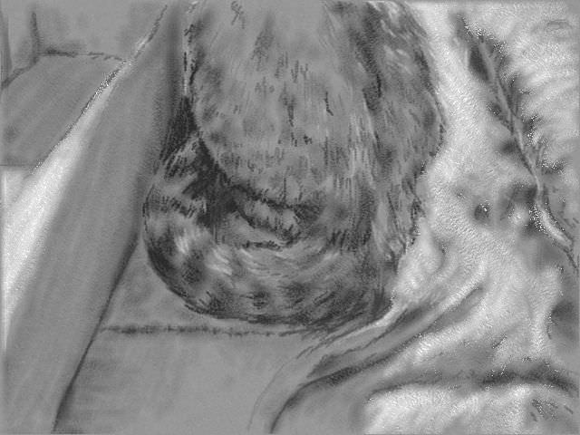 nintendo_3ds_ll_cat_sketch_20130204.jpg
