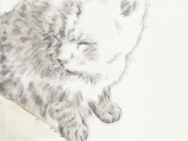 nintendo_3ds_ll_cat_sketch._20130206.jpg