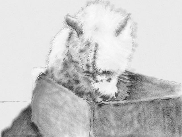 nintendo_3ds_ll_cat_sketch_20130208.jpg