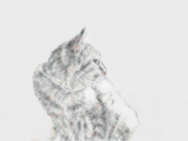 nintendo_3ds_ll_cat_sketch_20130216.jpg