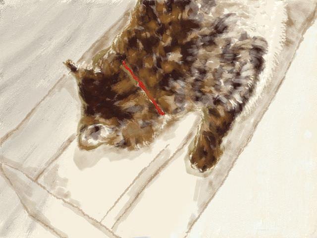 nintendo_3ds_ll_cat_sketch_20130220.jpg