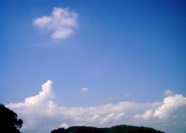 Polaroid_a520_sky_20130307-5.jpg